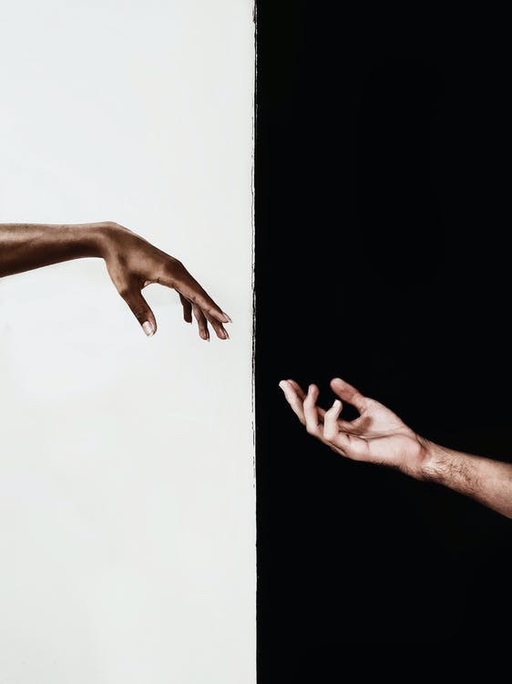 Human Hands Illustrations