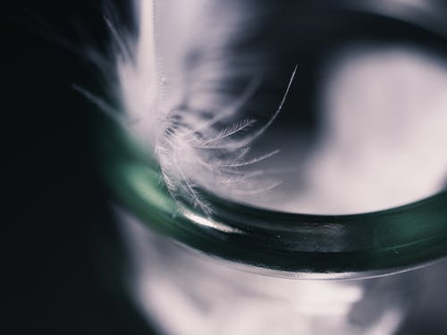 Immagine gratuita di astratto, bicchiere, macro, pennacchio