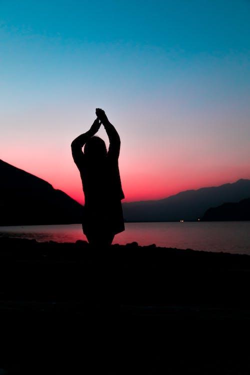 걱정 없는, 골든 아워, 사람, 새벽의 무료 스톡 사진