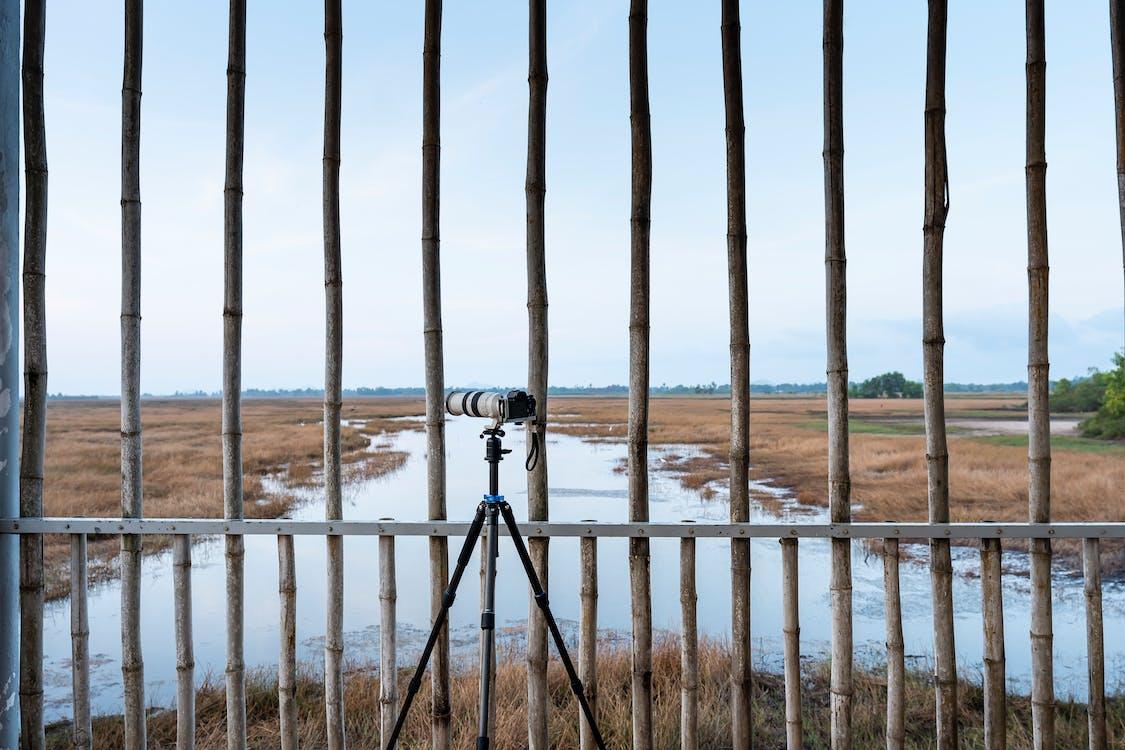 Gray Camera Near Fence