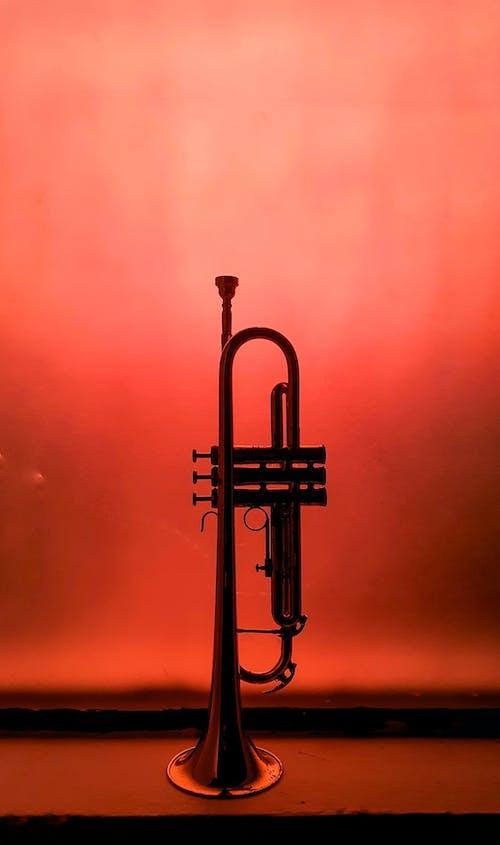 Kostnadsfri bild av blåsinstrument, instrument, jazz, klassisk