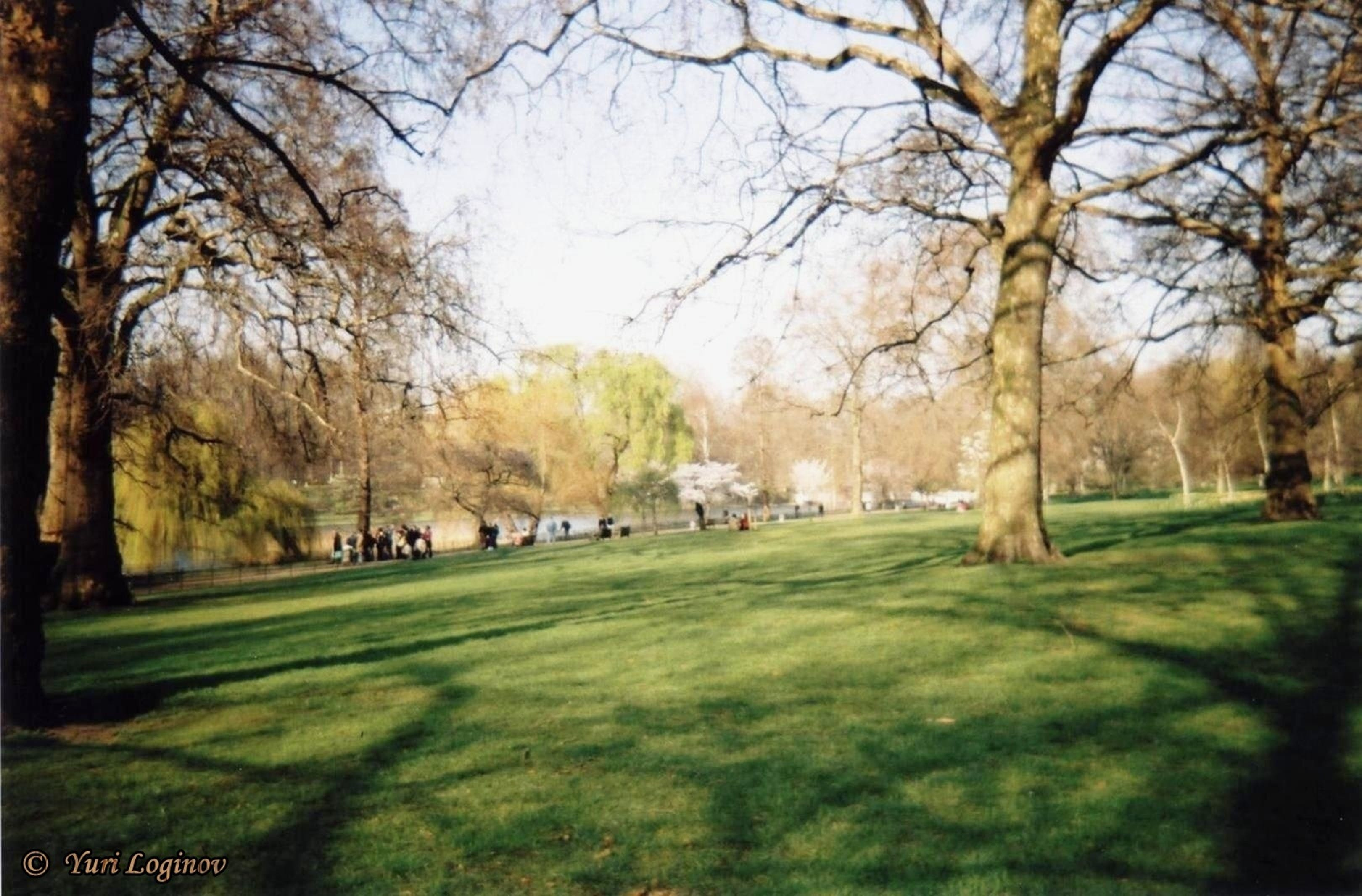 england, green park, london