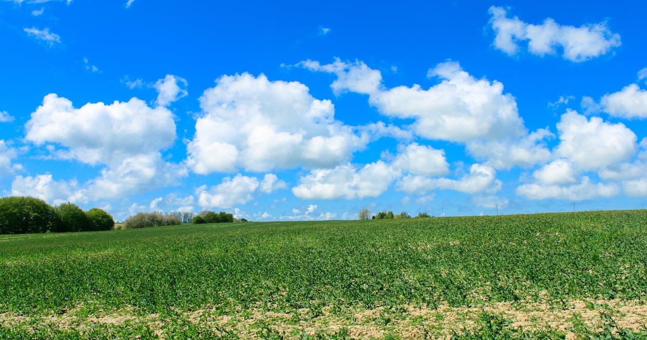 天性, 天空, 性質 的 免費圖庫相片