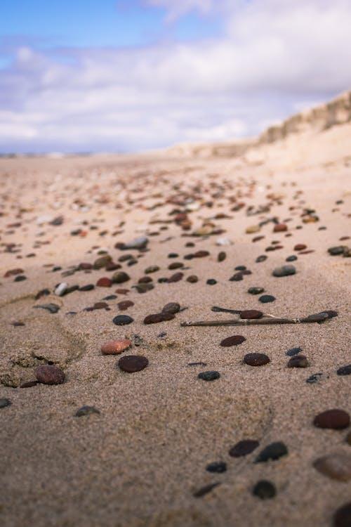 天空, 岩石, 海濱 的 免費圖庫相片