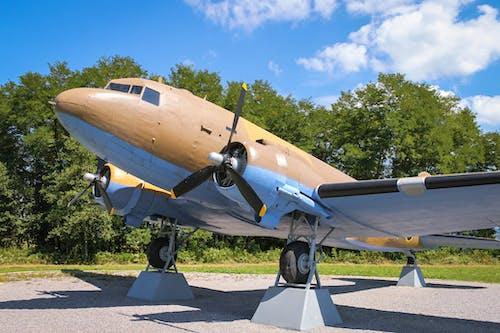 Immagine gratuita di aereo, aereo da combattimento, guerra mondiale