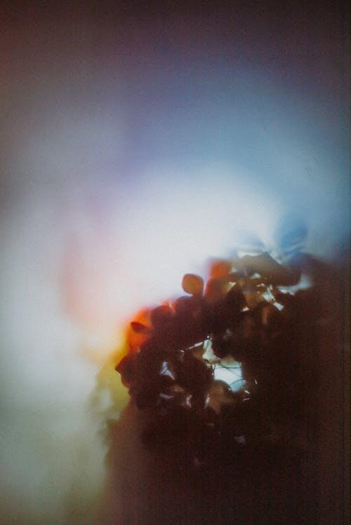 專注, 幻想背景, 抽煙, 模糊 的 免费素材图片