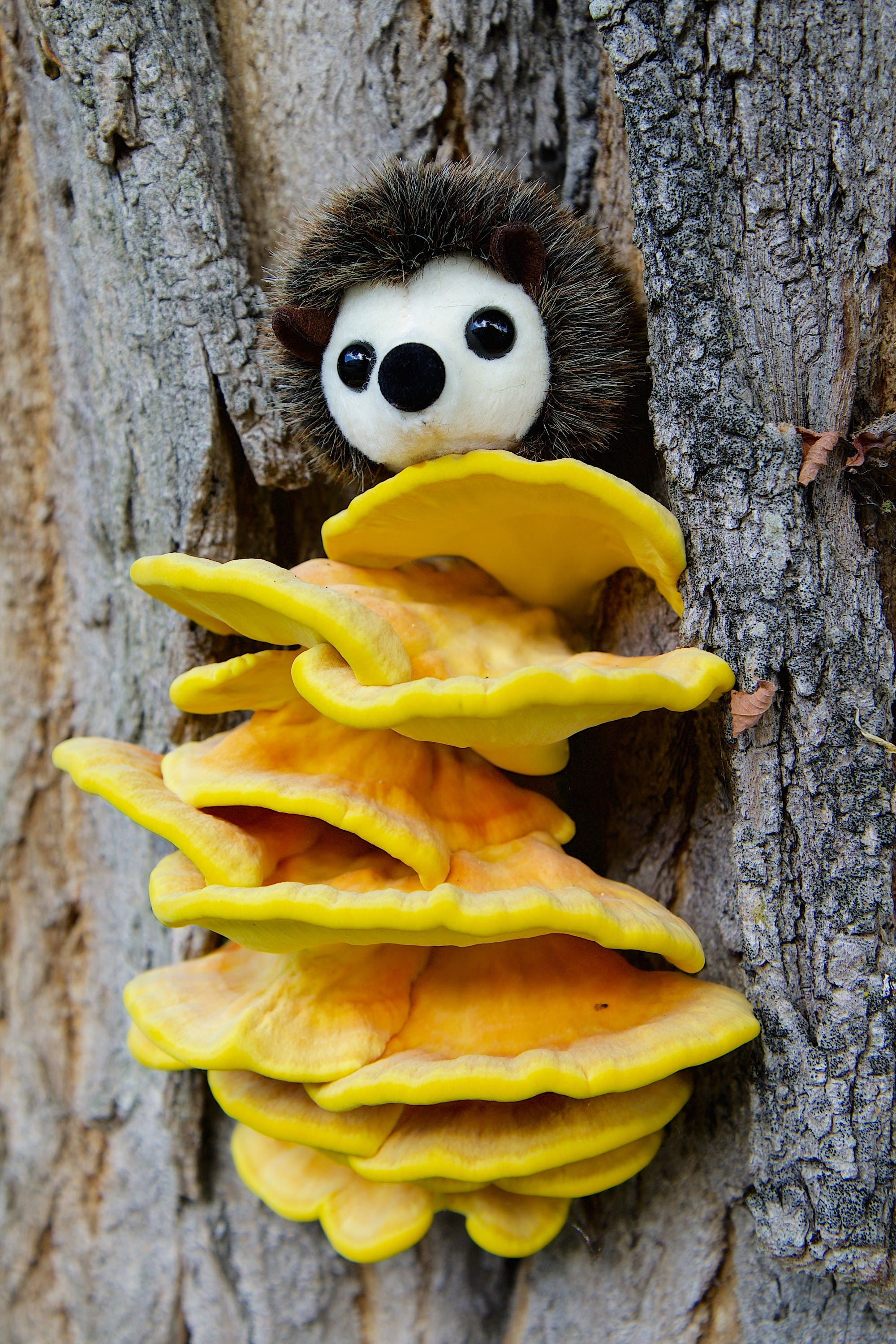 White Plush Toy on Top of Yellow Mushroom