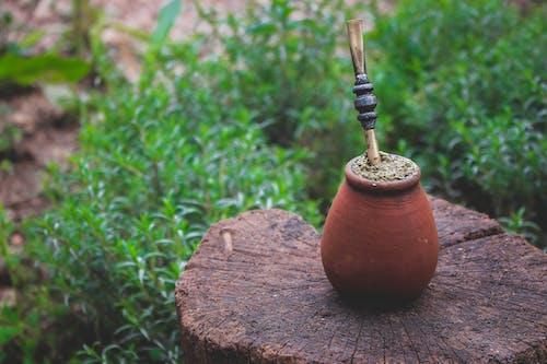 Shallow Focus Photography of Brown Pot