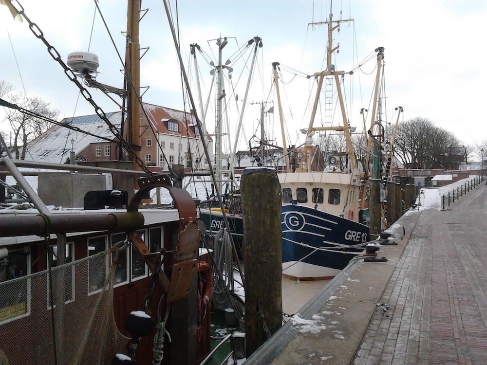Free stock photo of boot, fischerboot, Hafen