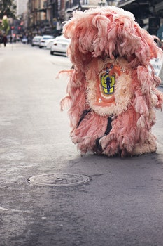 Free stock photo of street, pink, costume, carnival