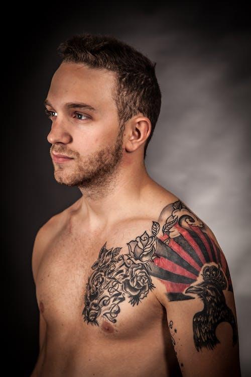 남성, 남자, 모델, 문신의 무료 스톡 사진
