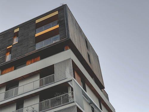 Gratis stockfoto met architectuur, herfst, hout, oranje