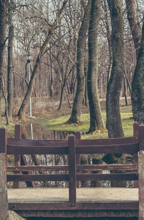 Free stock photo of bridge, curved, faded