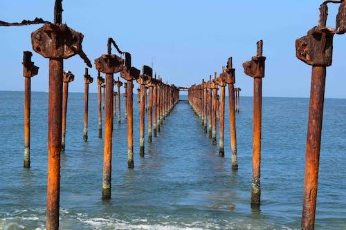 Free stock photo of beach, kerala, photography