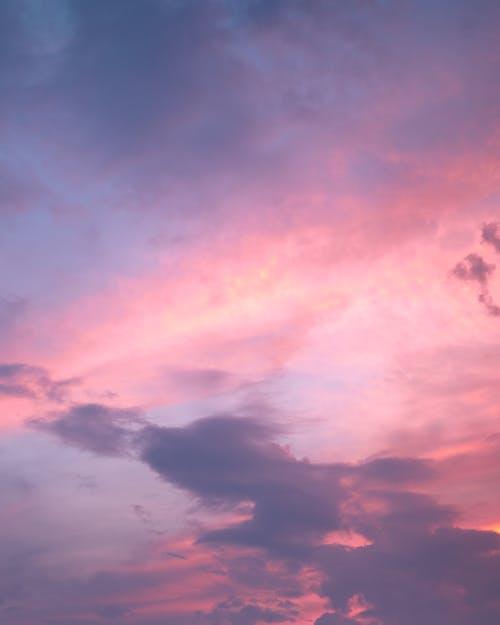 Immagine gratuita di autunno, cielo, cielo arancione, cielo rosa