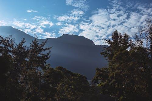 Základová fotografie zdarma na téma cestování, Hongkong, hora, krajina
