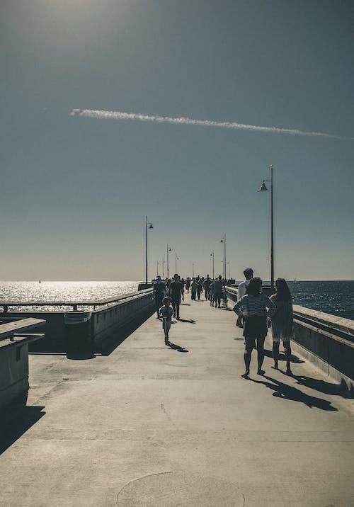 Foto d'estoc gratuïta de ca, caminant, caminar, dia