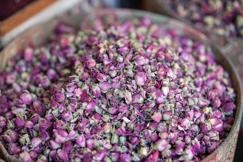 Ilmainen kuvapankkikuva tunnisteilla aromaattinen, hajuvesi, herkullista, kasvikunta