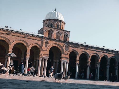 Free stock photo of city life, high speed photography, islam, islamic