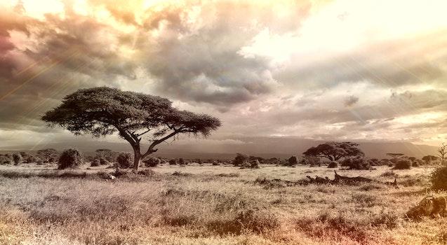 Kostenloses Stock Foto zu landschaft, natur, himmel, urlaub