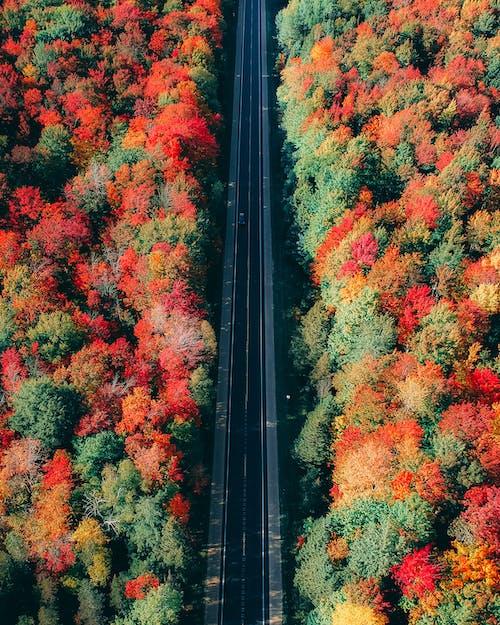 Δωρεάν στοκ φωτογραφιών με αυτοκινητόδρομος, βίντεο από drone, γαλήνιος, γραφικός
