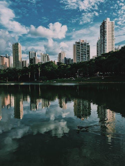 cloudscape, setor bueno, ウォーターフロント, シティの無料の写真素材