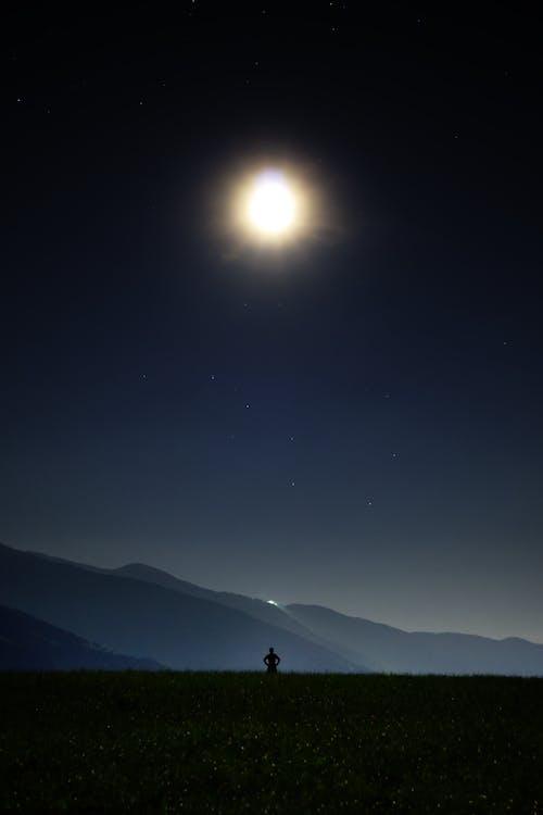 달, 밤, 별, 별 모양의 무료 스톡 사진