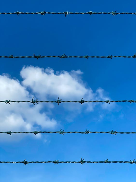 Photo of Barbed Wires