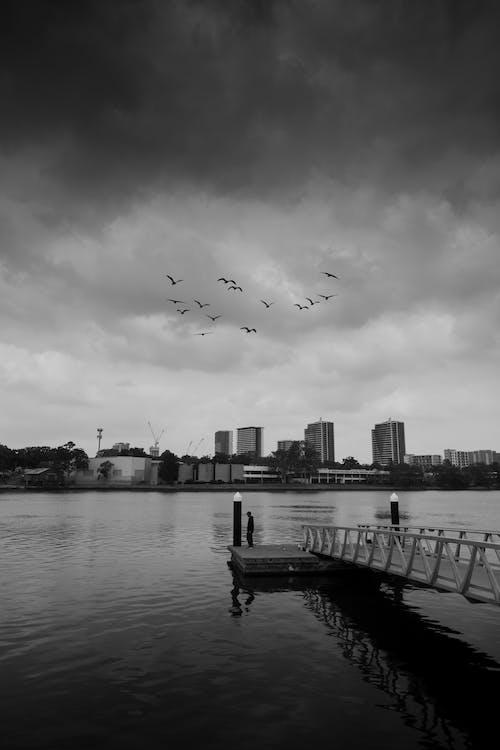 Greyscale Photo of City Skyline Near Sea