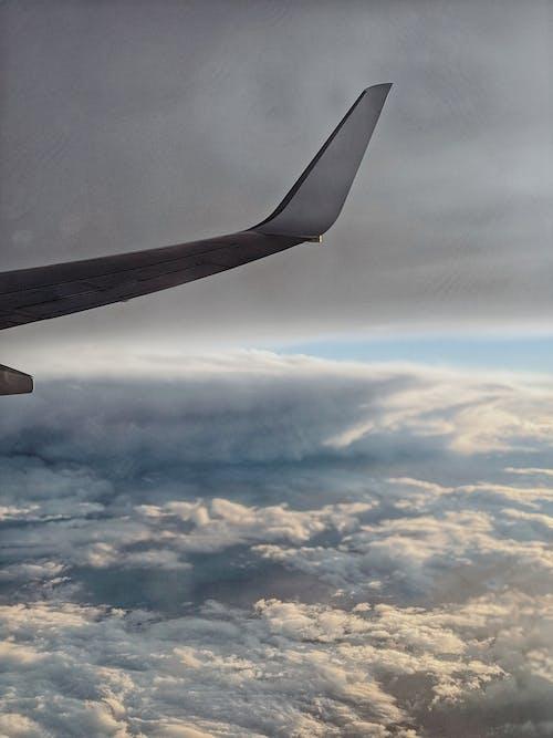 Gratis lagerfoto af blå, fly, flyrejse, flyve
