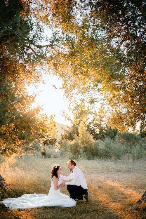 Wedding Couple  Kneeling on Grass Near Tree during Sunrise