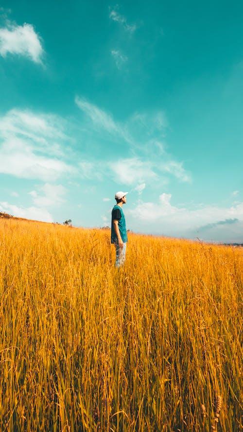 Man Standing on the Grass Field