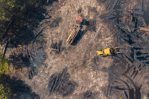 Aerial Photo of Truck Carrying Timber