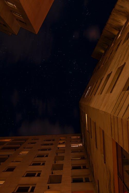 Free stock photo of building, city night, night