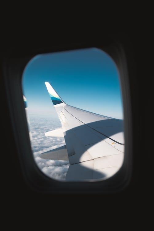 White Airplane Wing