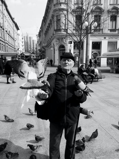 Greyscale Photography of Man Beside Flying Bird