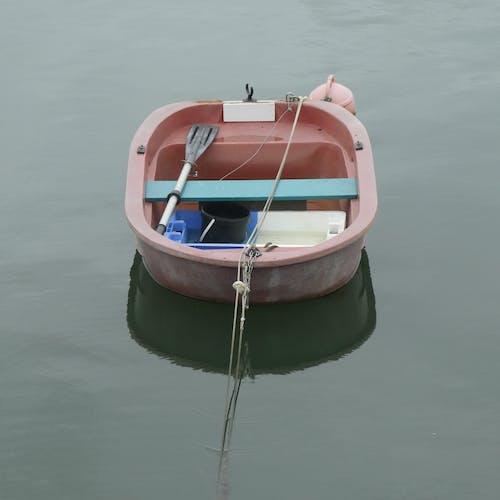 Gratis stockfoto met bark, bateau, calme, natuur