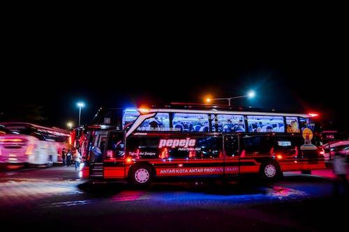 ターミナル, バス, バス停の無料の写真素材