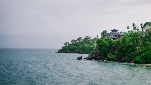 Ilmainen kuvapankkikuva tunnisteilla dominikaaninen tasavalta, hiekkaranta, hotelli, kaunis maisema