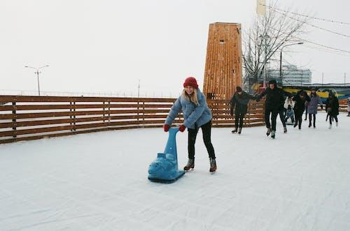 คลังภาพถ่ายฟรี ของ ICEE, การพักผ่อนหย่อนใจ, การอยู่ร่วมกัน, การแช่แข็ง