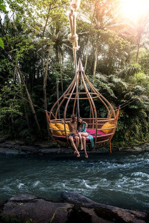 Ingyenes stockfotó bali, esőerdő, fák témában