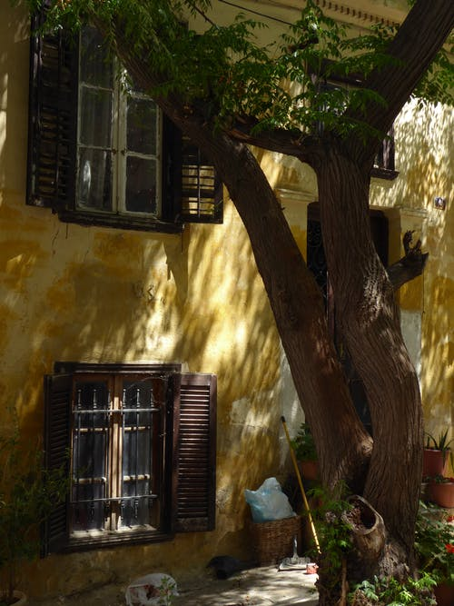 Free stock photo of athens, greece, plaka