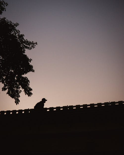 Free stock photo of silhouette, street, walkers