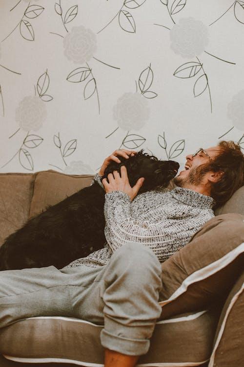 adam, arkaya yaslanmak, Aşk, bakım içeren Ücretsiz stok fotoğraf