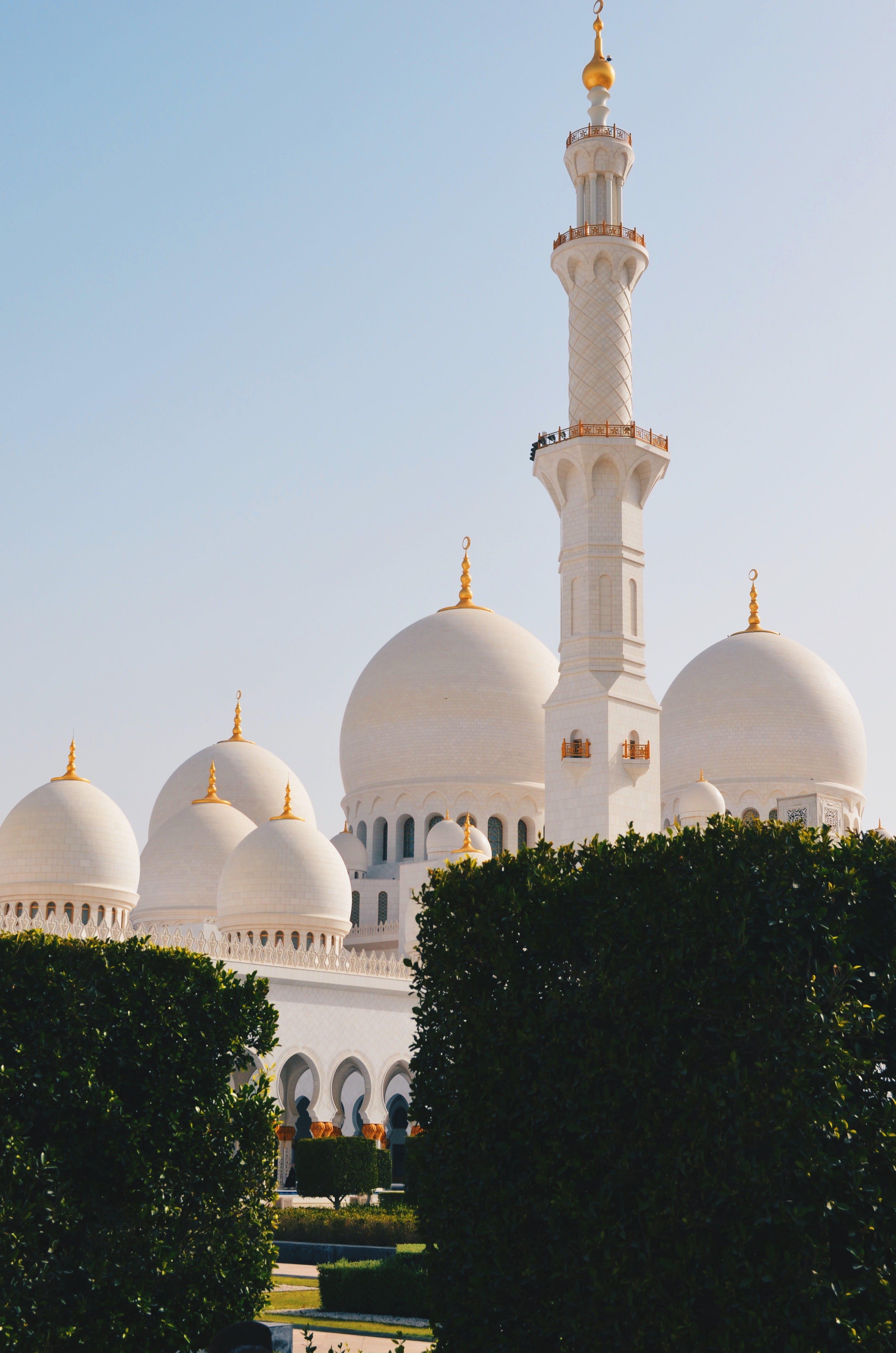 거룩한, 건물, 건축, 기도의 무료 스톡 사진