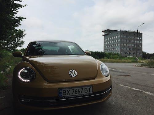 Foto profissional grátis de automóvel, besouro, volkswagen