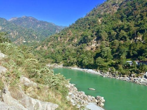 Ingyenes stockfotó Himalája témában