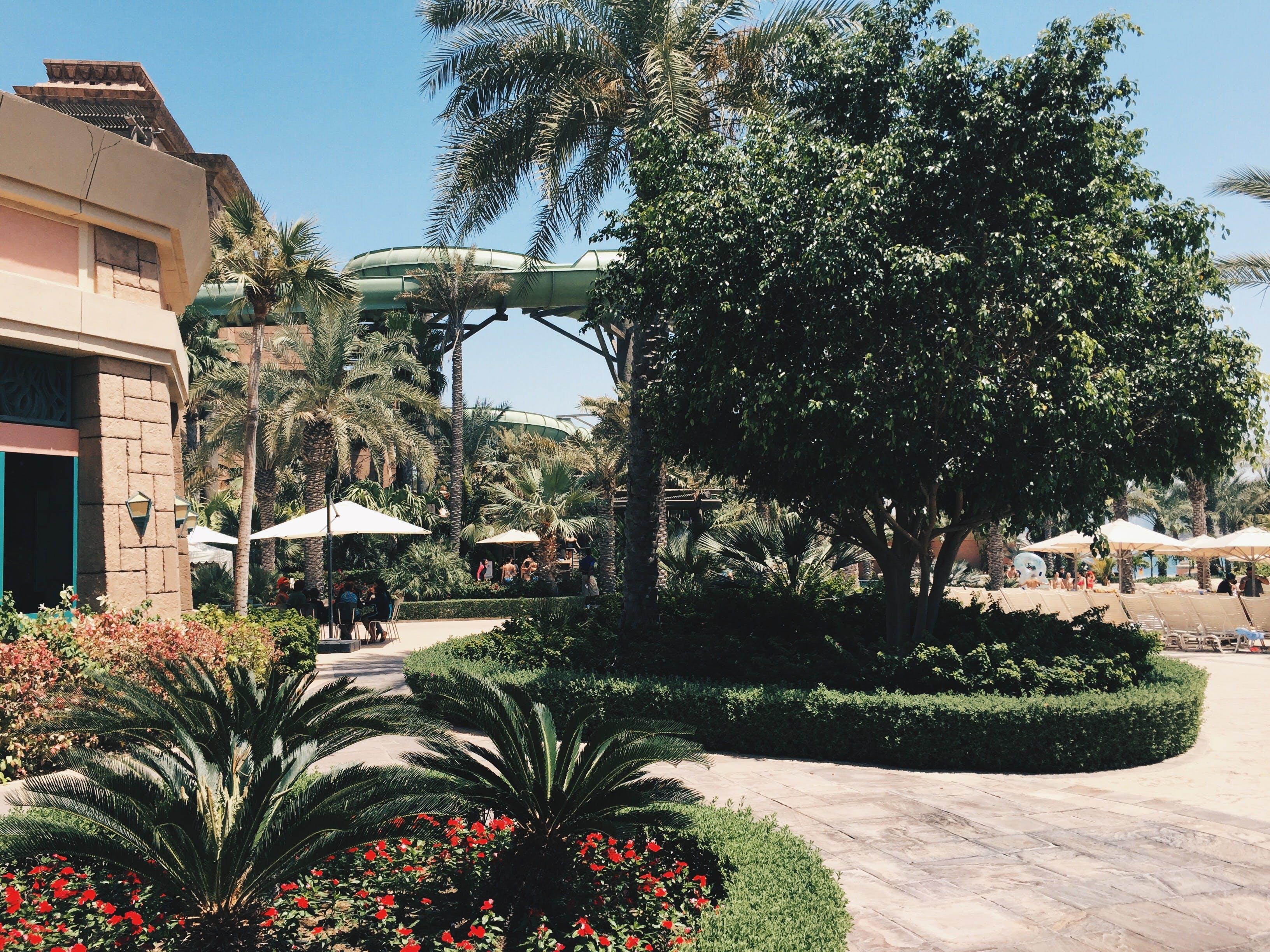 Free stock photo of atlantis, dubai, summer, the palm