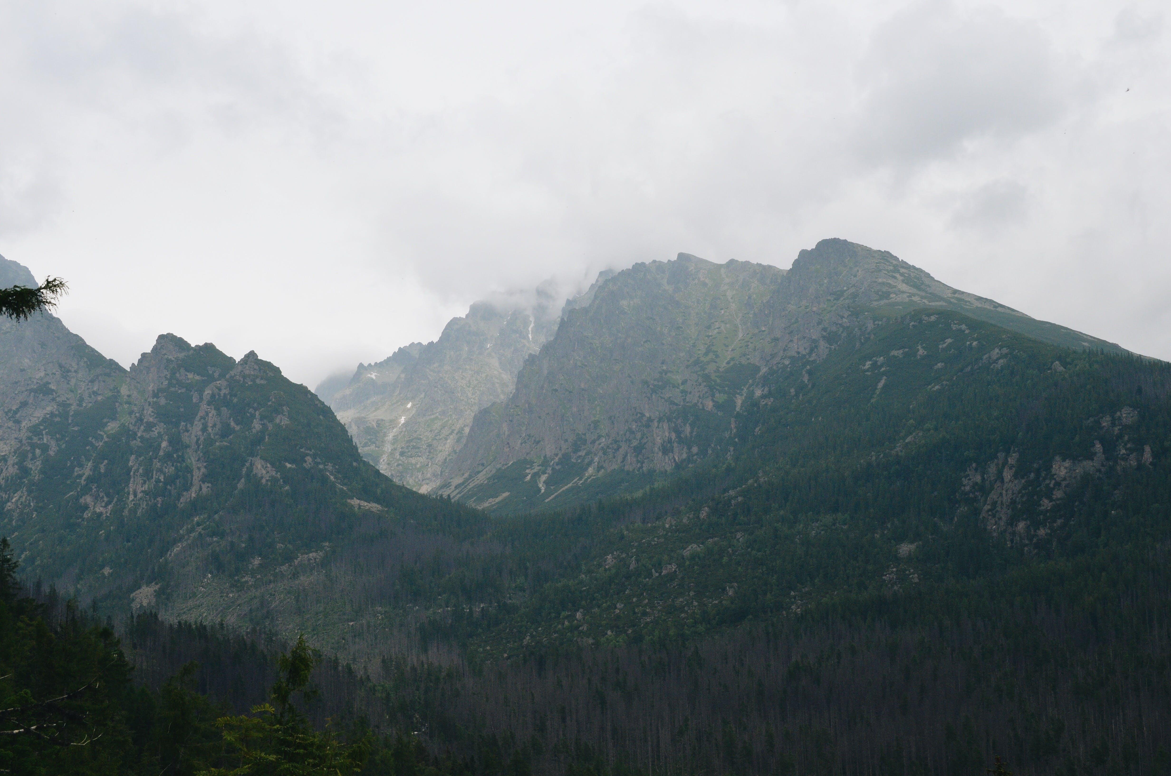 Kostenloses Stock Foto zu wolken, wald, berg, wolke