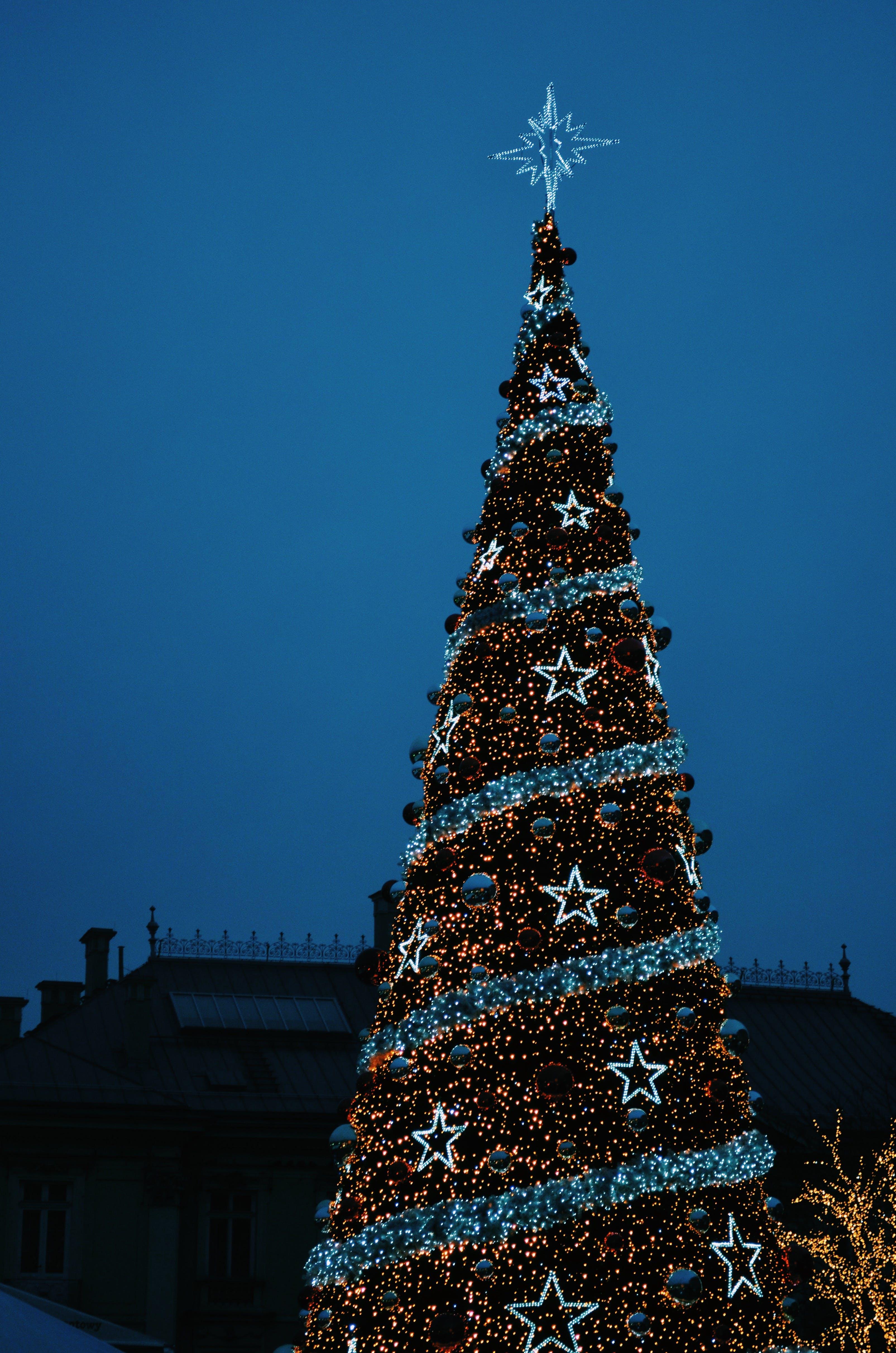 Δωρεάν στοκ φωτογραφιών με δέντρο, νέο έτος, νέο έτος δέντρο, Πολωνία